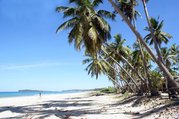 Uppuveli  #travelboutique #SriLanka #travel #vacation #putovanje #letovanje #odmor