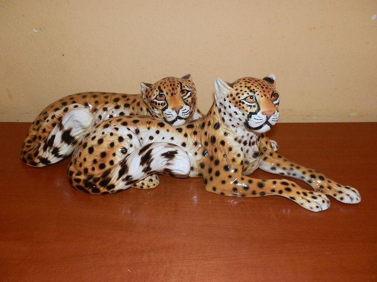 grande coppia di leopardi Ronzan