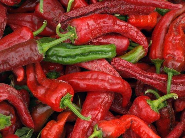 Chilis mexico