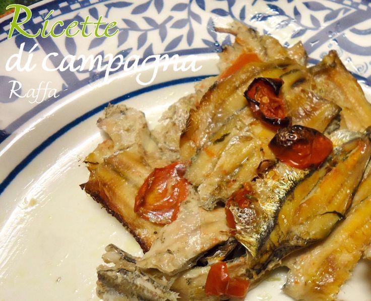 Le alici al forno con pomodori e origano, un secondo piatto di pesce azzurro semplice, economico e buono.