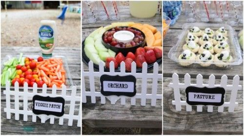 Farm Birthday Party Theme for Toddler Boys