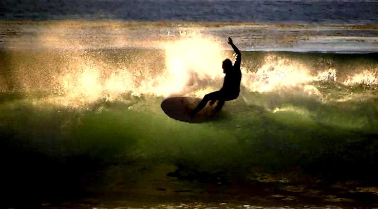 Fishy fun on a surfboard in North County San Diego  Surf