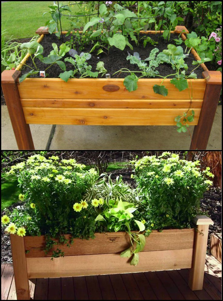 how to build an elevated vegetable garden