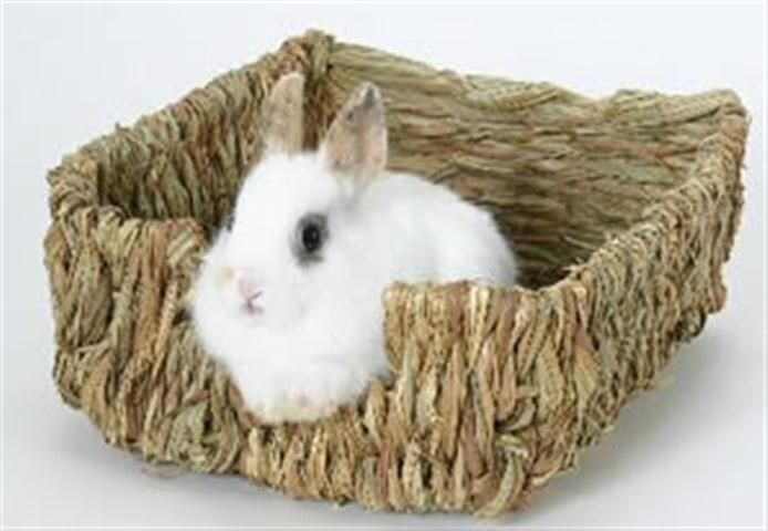 Marshall Pet Peters Woven Grass Pet Bed For Small Animals