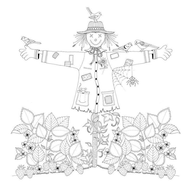 Coloring Garden Colouring Pages Find This Pin And More On Johanna Basford