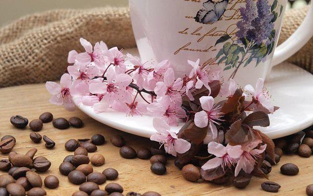 Τα οφέλη ομορφιάς του καφέ