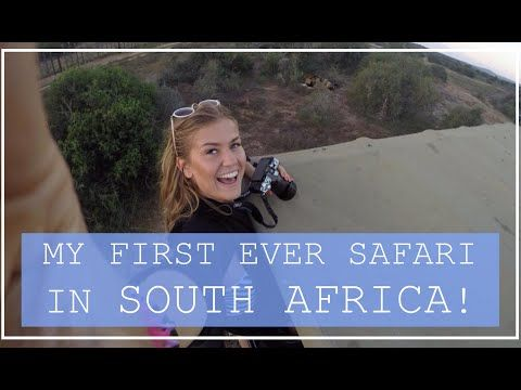 How You Can Safari On A Budget At Addo National Park, South Africa