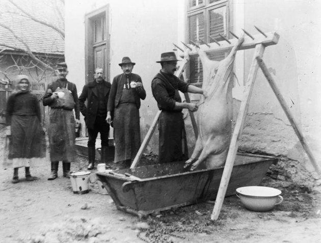 Disznóvágás Solymáron 1925-ben