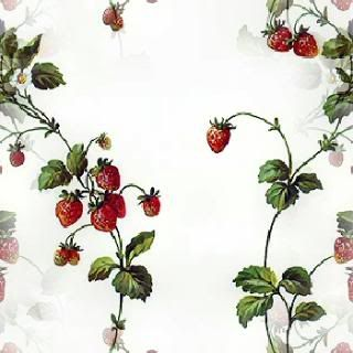 17 best images about strawberries on pinterest it is clip art and berries. Black Bedroom Furniture Sets. Home Design Ideas