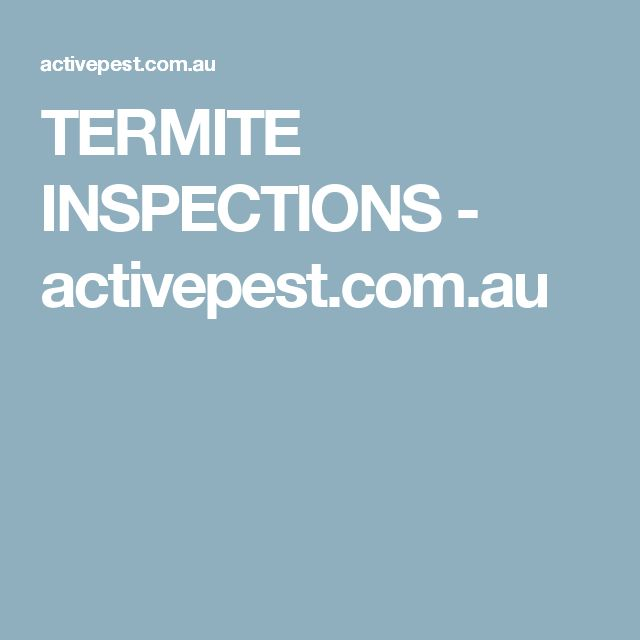 TERMITE INSPECTIONS - activepest.com.au