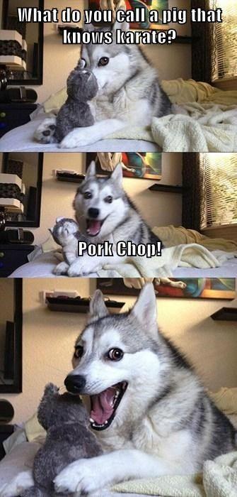 This Joke Will Make You Go Hog Wild!