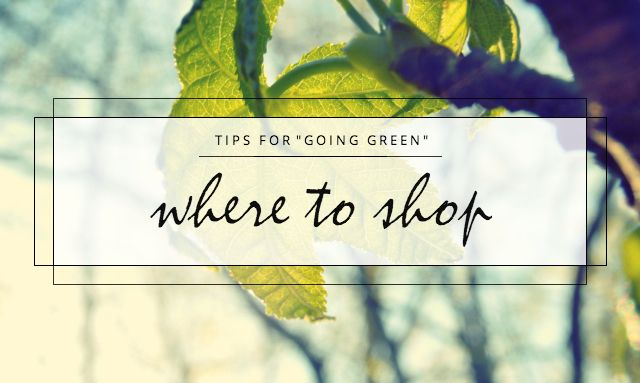 "Tips for ""Going Green"": Where to Shop - NatuRia Beauty"