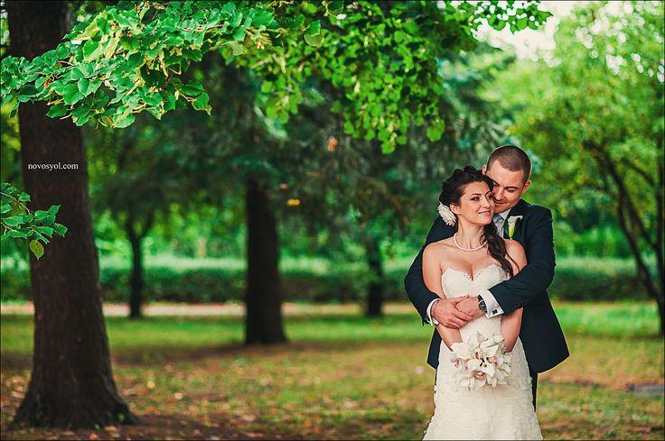 Очень нежные, яркие, красочные свадебные фотографии