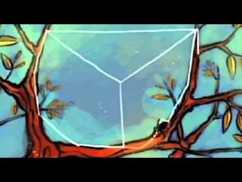 ▶ Hoe maakt een spin een web? - YouTube Duidelijk filmpje om samen met de kleuters te bekijken