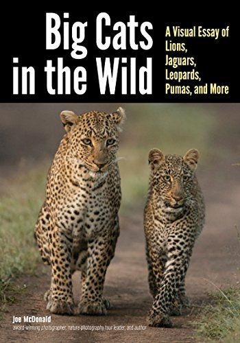 Available 2018! Big Cats in The Wild: A Visual Essay of Lions, Jaguars, Leopards, Pumas, and More