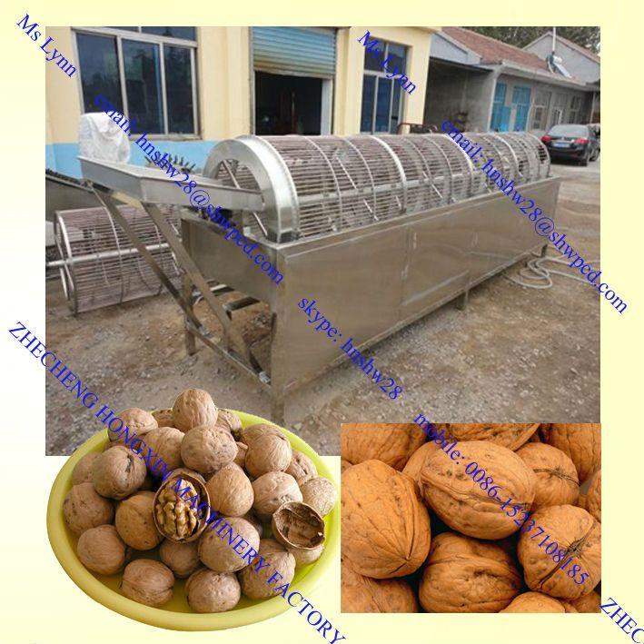 walnut sorting machine /walnut grader/walnut sorter