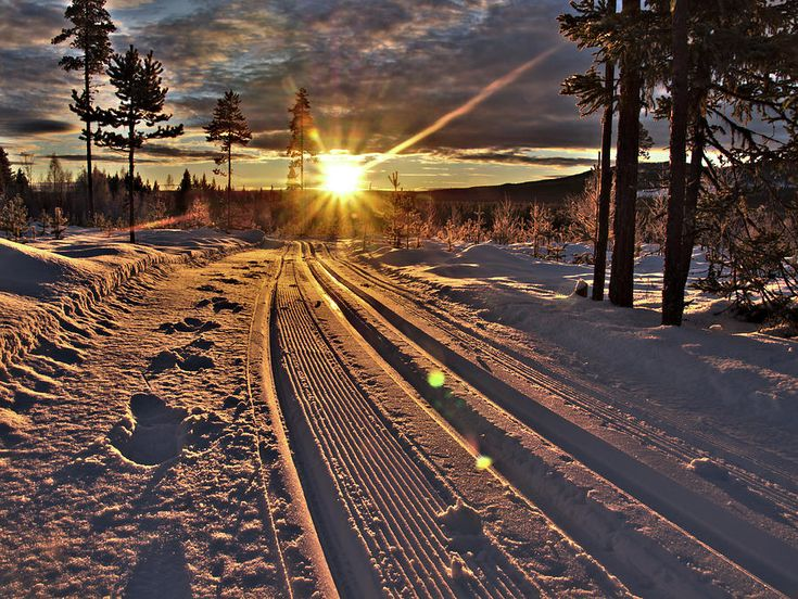 Ski Trails With Sun Beams By Sushko Photograph - Ski Trails With Sun Beams by Tamara Sushko