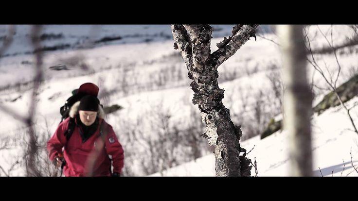 GuideGunnar`s activities Live from Ringvassøya, Arctic Norway!