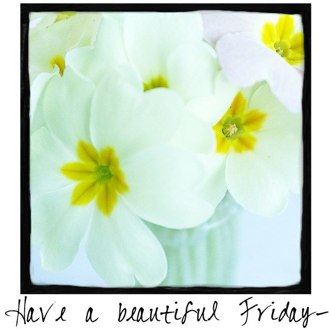 Have a Beautiful Friday! Come by and check out A Warm Hello! #plannerfreebies