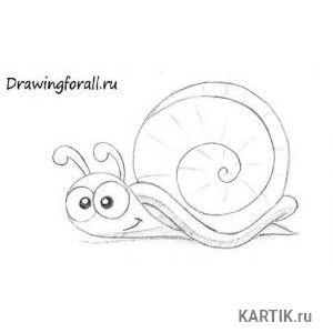 Как нарисовать улитку карандашом поэтапно  Drawingforall.ru 15