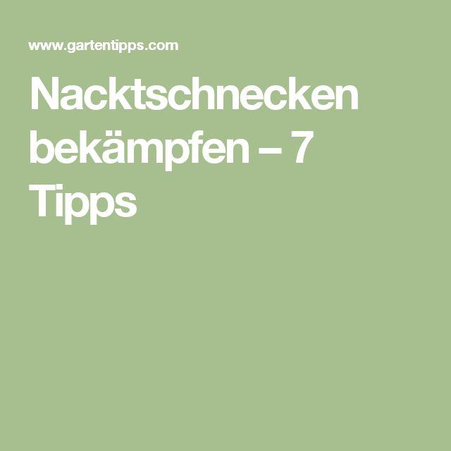 Nacktschnecken bekämpfen – 7 Tipps