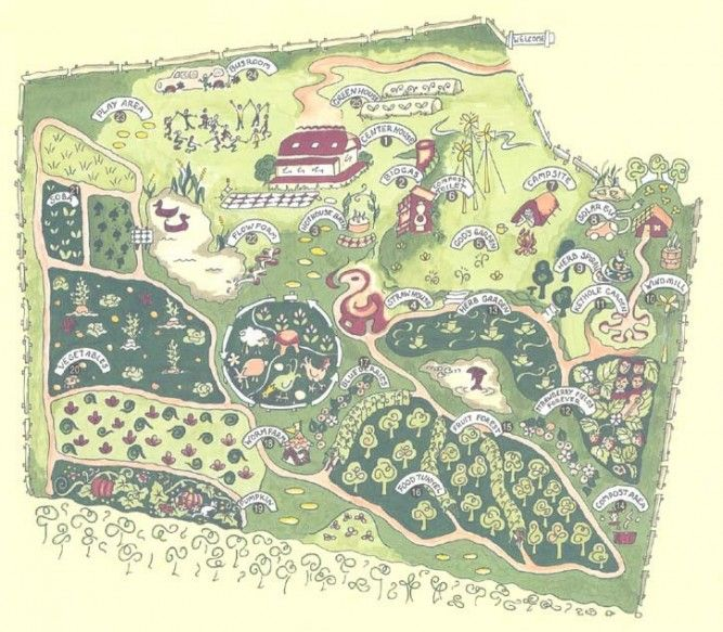 25+ Best Ideas About Permaculture On Pinterest | Permaculture