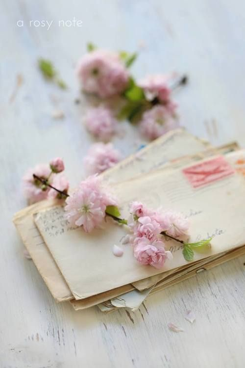 A Rosy Note ~