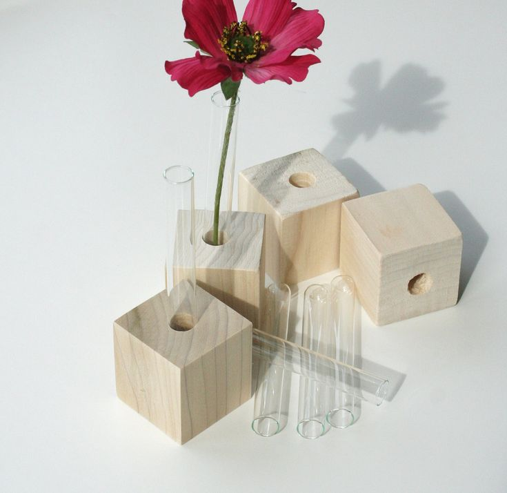 35 best test tube vases images on pinterest test tubes for Glass test tubes for crafts