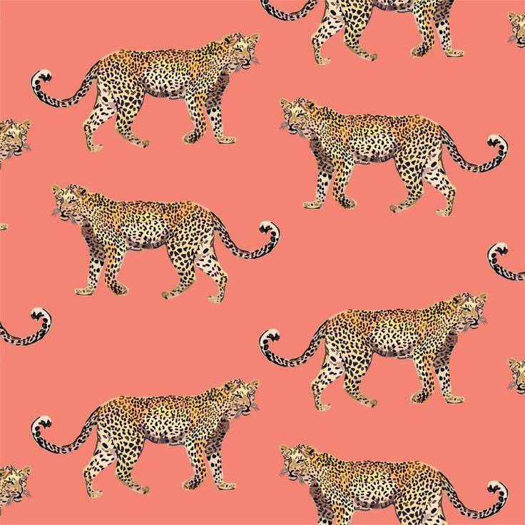 Cheetahs Peel Stick Wallpaper In 2020 Cheetah Wallpaper Cheetah Print Wallpaper Animal Print Wallpaper