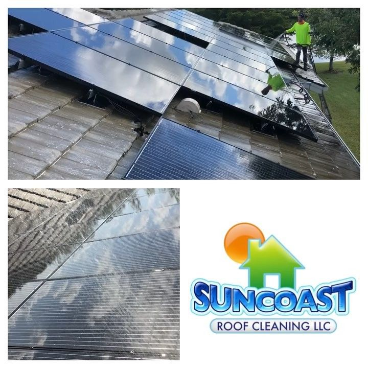 Suncoast Roof Cleaning in #sarasota Cleaning a #roof and #solarpanels #softwash