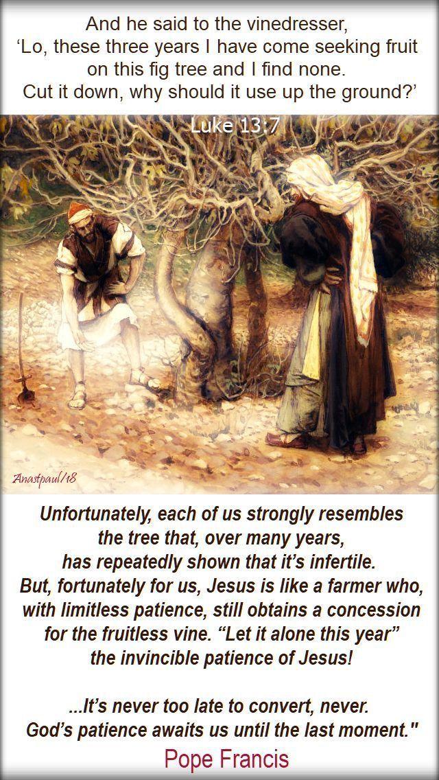 Saturday Gospel Luke 13 1 9 Repent Or Perish The