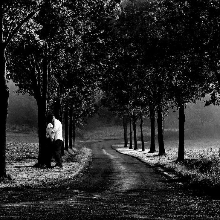 A Love Affair Photo - Visual Hunt