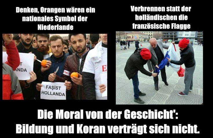 Bildung vs. Koran