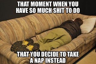 Truth.: Colleges Life, Funny Pictures, Finals Week, My Life, Funny Quotes, So True, Naps Time, True Stories, Take A Naps