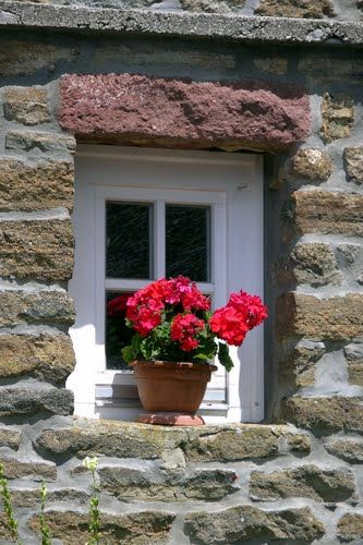 Geranium in the window of a rural house in Tihany, Hungary