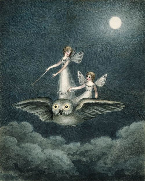 fairies flying on top of an owl | FAIRIES & FAIRY TALES ...