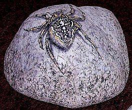 Dekorácie - pavúk križiak - 639176