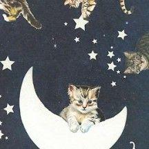 Cat of the Moon Italian Paper