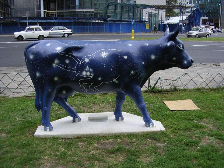 Krowa: Krowa Spod Znaku Byka; Autor: Andrzej Pagowski