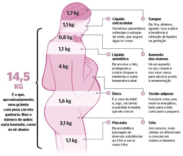 A gravidez semana a semana: tudo sobre o desenvolvimento do bebê | Ler Saúde