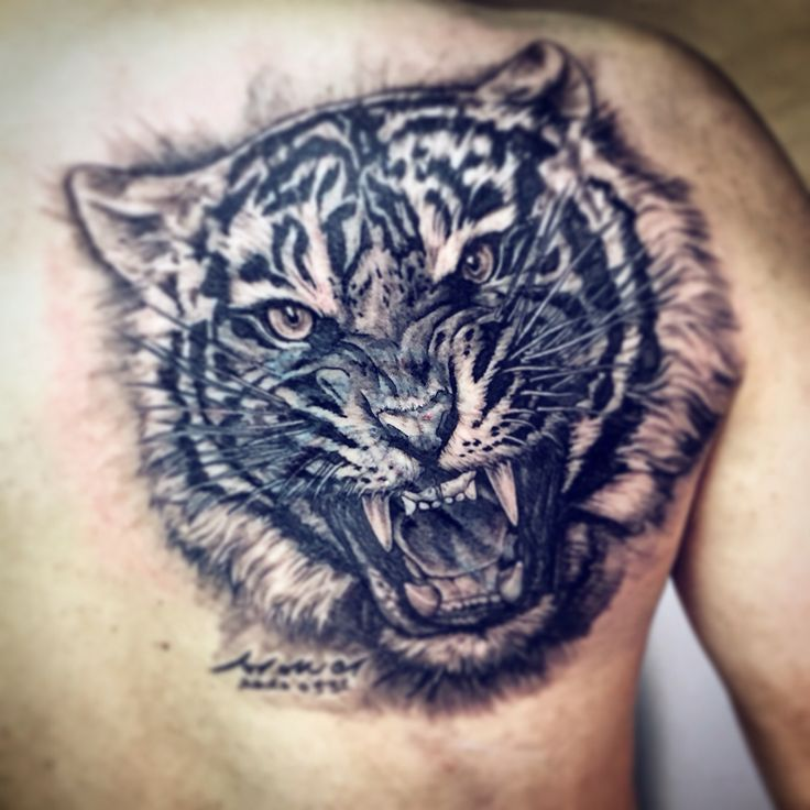 My Back Piece October 2012 Center Symbol Is The Sikh: #stattoo #tattooist Nova #tattoo #호랑이타투 #tiger
