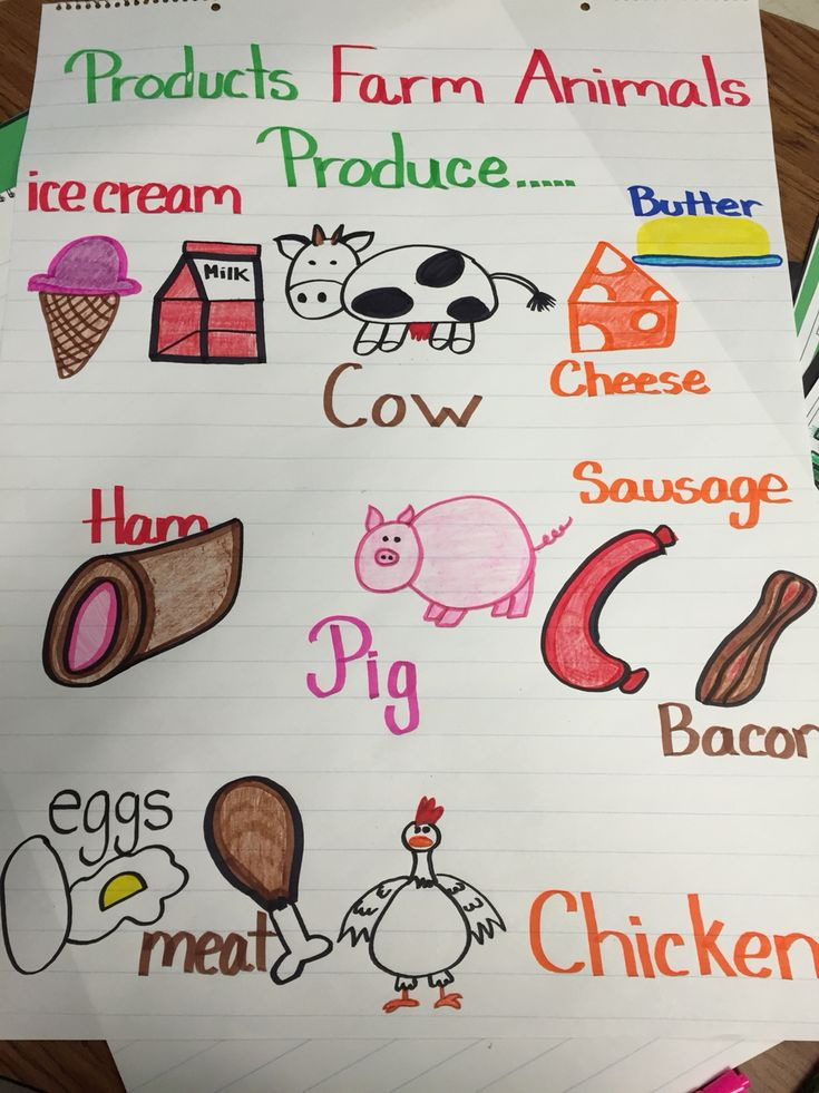 What farm animals produce anchor chart. Used for my Prek
