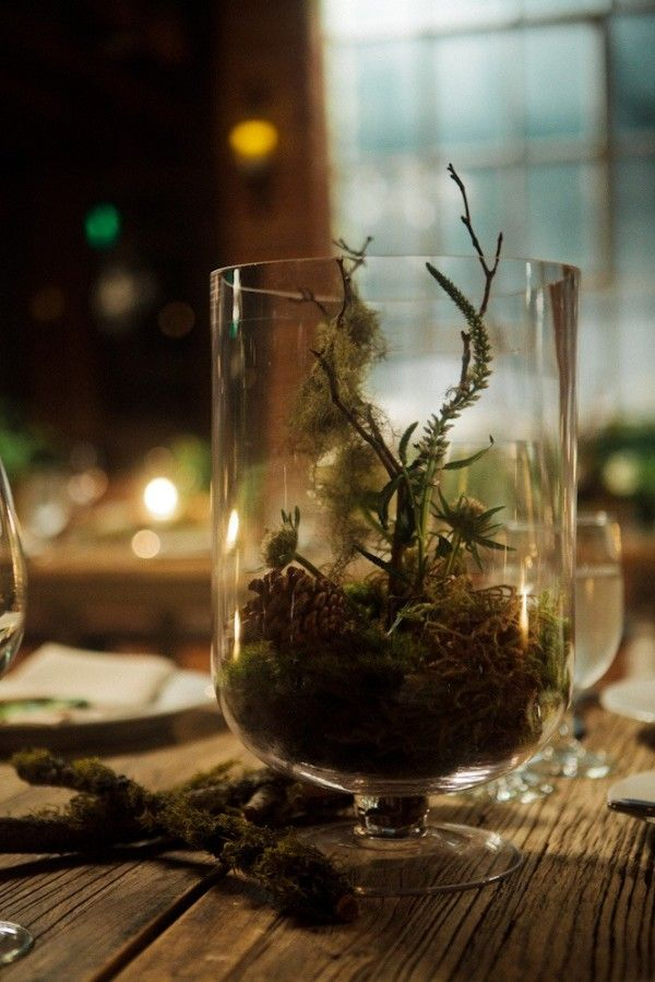 terranium Enchanted Forest Wedding http://mbmaher.com/