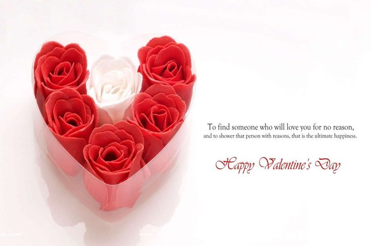 Read the most excellent Romantic Valentine Poems for Husband Wife in English and Hindi, Valentine Love Poems have the ideal words to express your profound sentiments to your affection. In this gathering we've gathered Happy Valentine Poems for Husband, Romantic Valentines Day Poems for Wife with Valentine Love Images of Couple.
