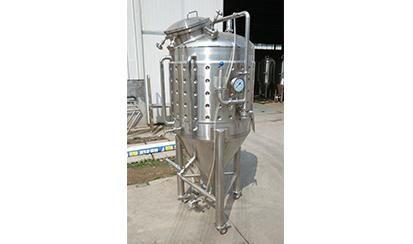 200L single layer fermenter