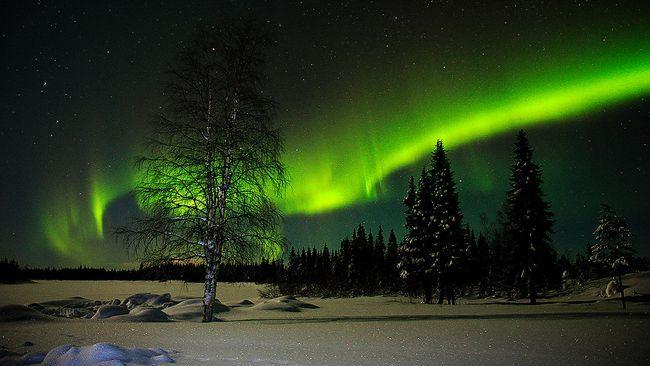Månljus norrskensnatt i norra Tornedalen