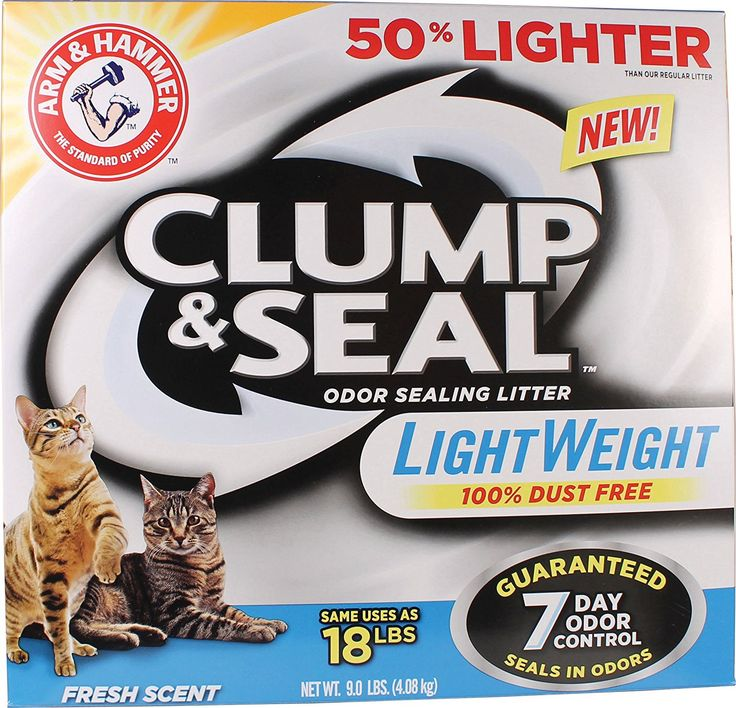 Arm and Hammer Clump and Seal Lightweight Litter, Fresh Scent 9 Lbs >>> Check this awesome image  : Cat litter