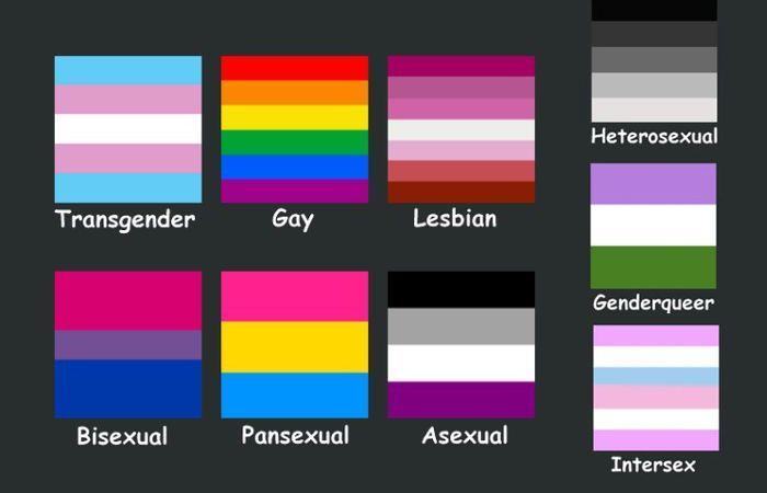 Genderqueer Pride flag pasties