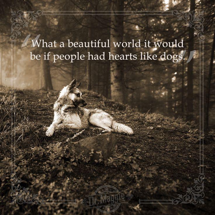 What a wonderful world it would be! #doglove #motivationmonday