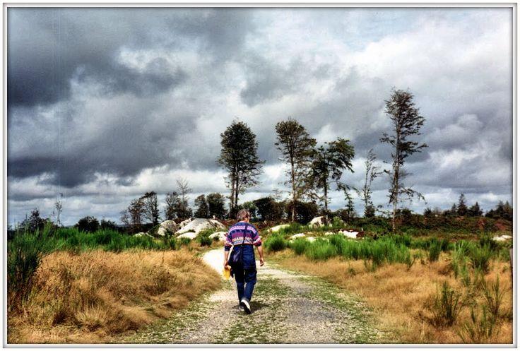 Huelgoat, riviere d'argent, la foresta di Re Artù.  Bretagna, 1992
